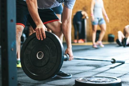 Nutrición Rica en Proteínas es  Vital para el Buen Estado Muscular