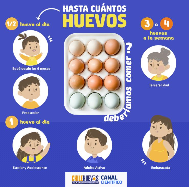 ¿Hasta cuántos huevos deberíamos comer?
